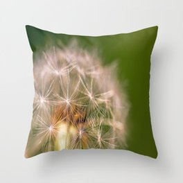 Snowglobe - Macro Photograph of Dandelion Throw Pillow