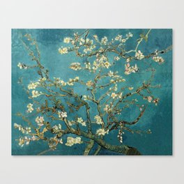 Blossoming Almond Tree Canvas Print