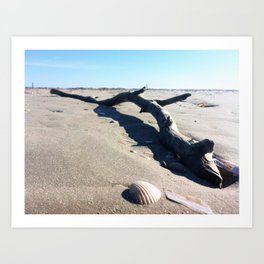 Danish beach Art Print