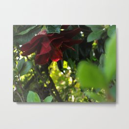 Hidden Flower Metal Print