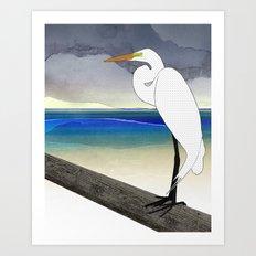 American Great Egret Art Print