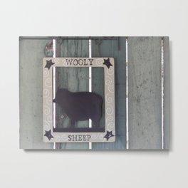 Wooly Sheep Metal Print