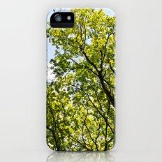 Peaceful Forest iPhone SE Slim Case