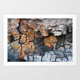 Wood coals Art Print