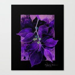 Green Leaves with Berries Canvas Print