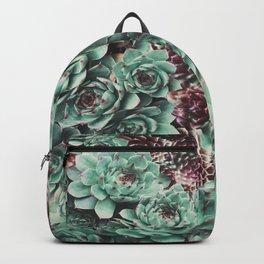 Succulent Sempervivum Plants Backpack