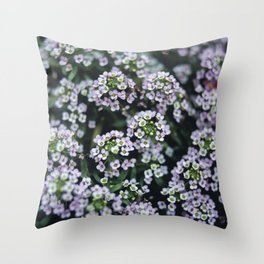 Detail of tiny white flowers growing in an english garden. UK. (Shot on film). Throw Pillow