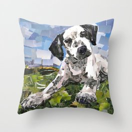 Calvin for Friends of the Shelter Throw Pillow