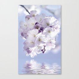 Spring 297 sakura Canvas Print
