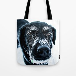 Snow Dog // Cross Country Skiing Black and White Animal Photography Winter Puppy Ice Fur Tote Bag