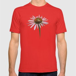 coneflower & bee postale T-shirt