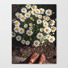 Lovely Days Canvas Print