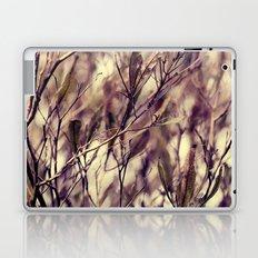 Patterns in my Winter Garden Laptop & iPad Skin