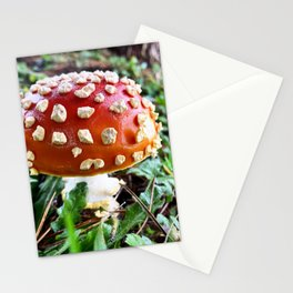 Baby Fly Agaric Mushroom by Seasons Kaz Sparks Stationery Cards