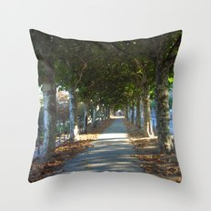 Paris Pathway Throw Pillow