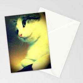 Maybelline Stationery Cards