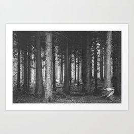 Wood Land Art Print