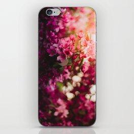 Beauty of Spring II iPhone Skin