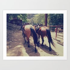 California Horses  Art Print
