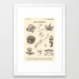 Decay & Assortment Framed Art Print