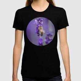 Lavender Bee T-shirt