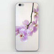 pink orchid iPhone & iPod Skin