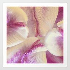 Layered Pink Art Print