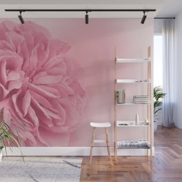 Light Pink Rose #1 #floral #art #society6 Wall Mural