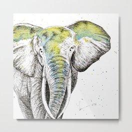 Elephant II Metal Print