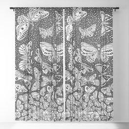 Escher - Butterflies Tessellation Sheer Curtain