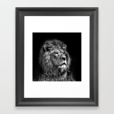 Proud Young Lion Framed Art Print