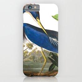 Louisiana Heron by John James Audubon iPhone Case
