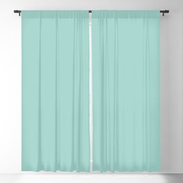 Light Pastel Aquamarine Green Blue Solid Color Pairs To Sherwin Williams Aqueduct SW 6758 Blackout Curtain