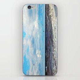 Flying Cormorants iPhone Skin