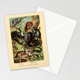 Vintage New World Monkeys Stationery Cards