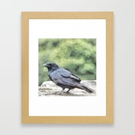 Crows Everywhere Are Equally Black Framed Art Print