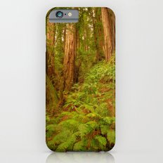Redwoods Regional II Slim Case iPhone 6s
