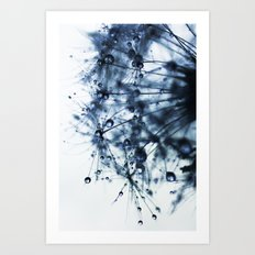 dandelion blue XII Art Print