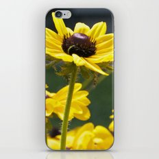 yellow flowers iPhone & iPod Skin