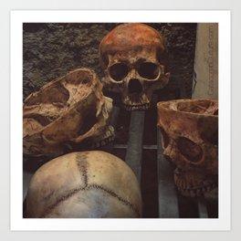 Catacomb Culture - Human Skull Basement Art Print
