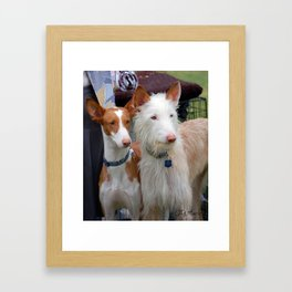 Two Coats - Same Breed Framed Art Print