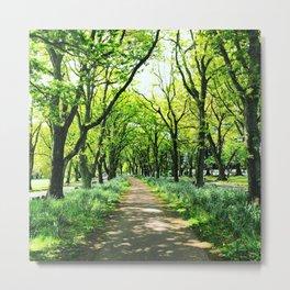 A Walk Among The Trees Metal Print