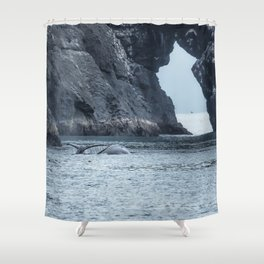 Two Humpback Whales in Resurrection Bay Shower Curtain