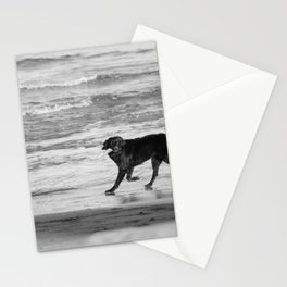 Playing Fetch Stationery Cards