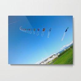 Kites Metal Print