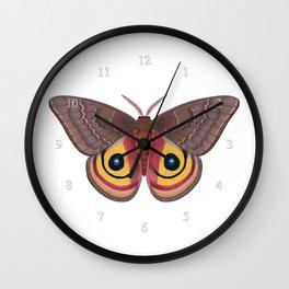 io moth (Automeris io) female specimen 1 Wall Clock