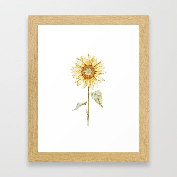 Sunflower 01 Framed Art Print