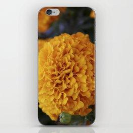 Flor de Cempasuchil iPhone Skin