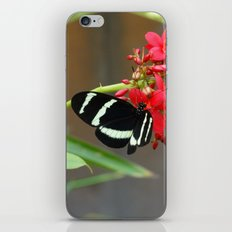 Butterfly 1 iPhone & iPod Skin