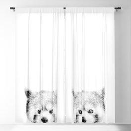 Red panda Blackout Curtain